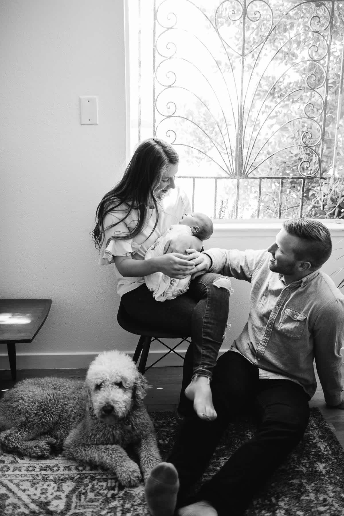 san-francisco-lifestyle-in-home-newborn-with-dog-42