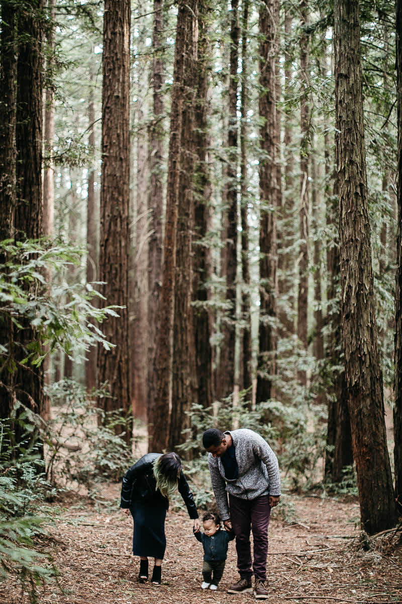 oakland-redwoods-urban-family-session-15