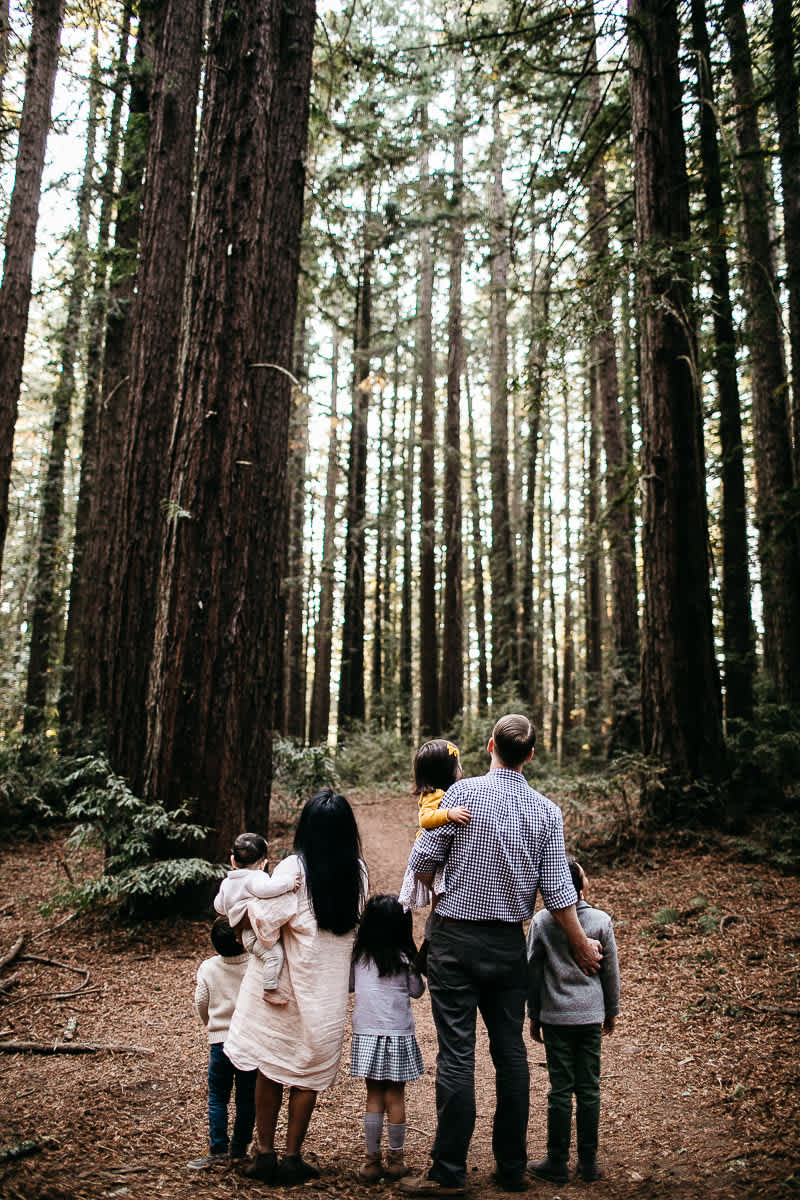 oakland-redwoods-dreamy-big-family-lifestyle-session-21