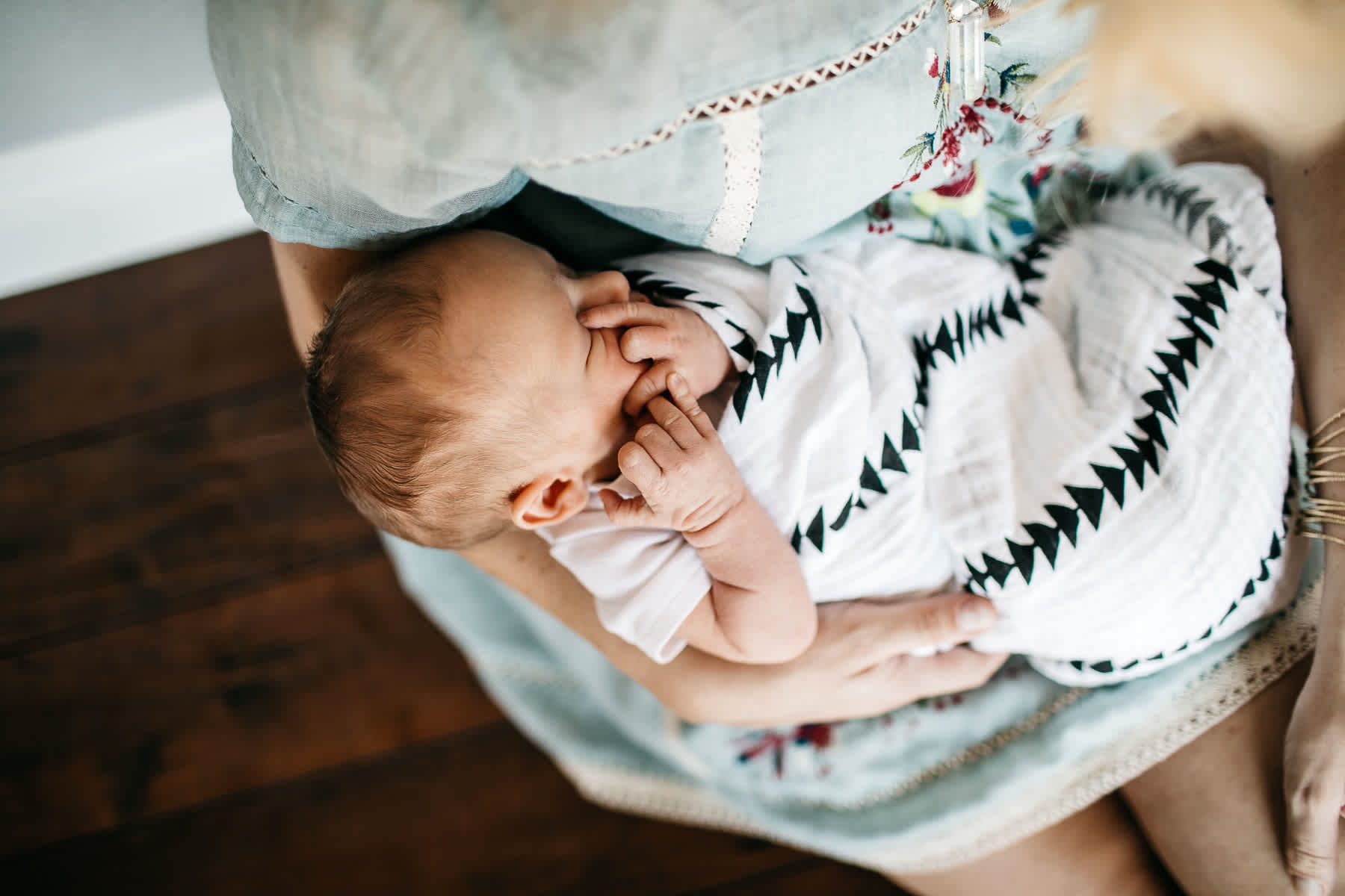 in-home-lifestyle-newborn-with-great-dane-dog-6