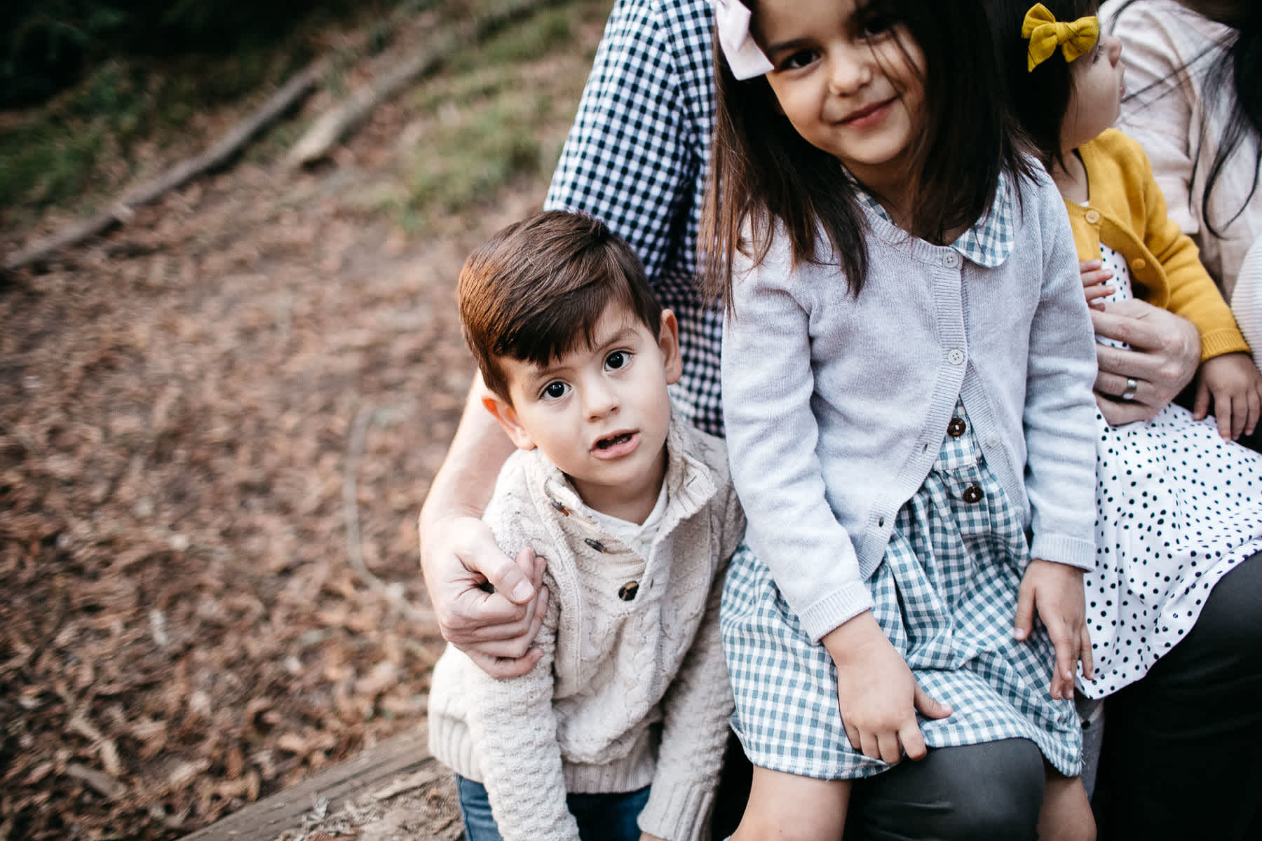 oakland-redwoods-dreamy-big-family-lifestyle-session-31