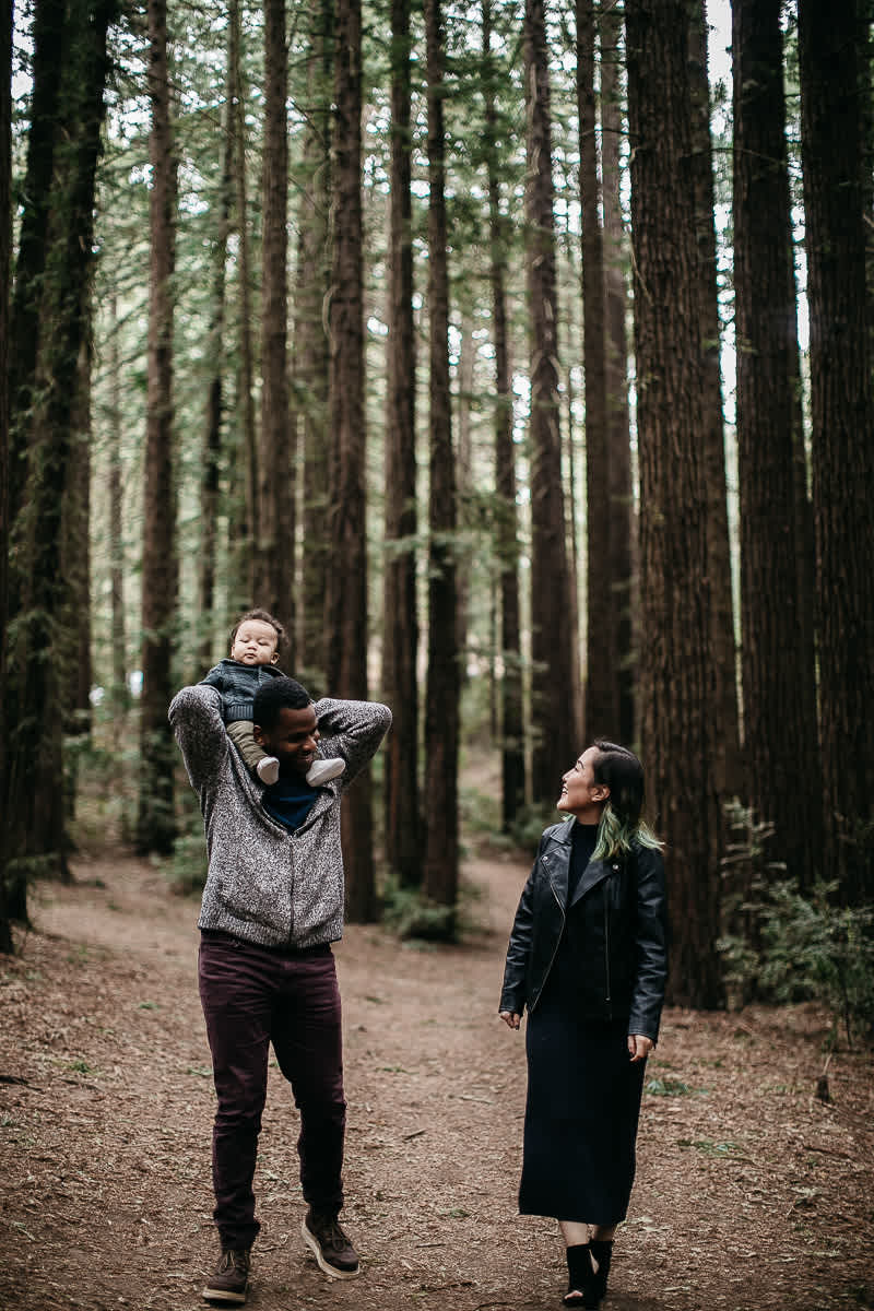 oakland-redwoods-urban-family-session-8