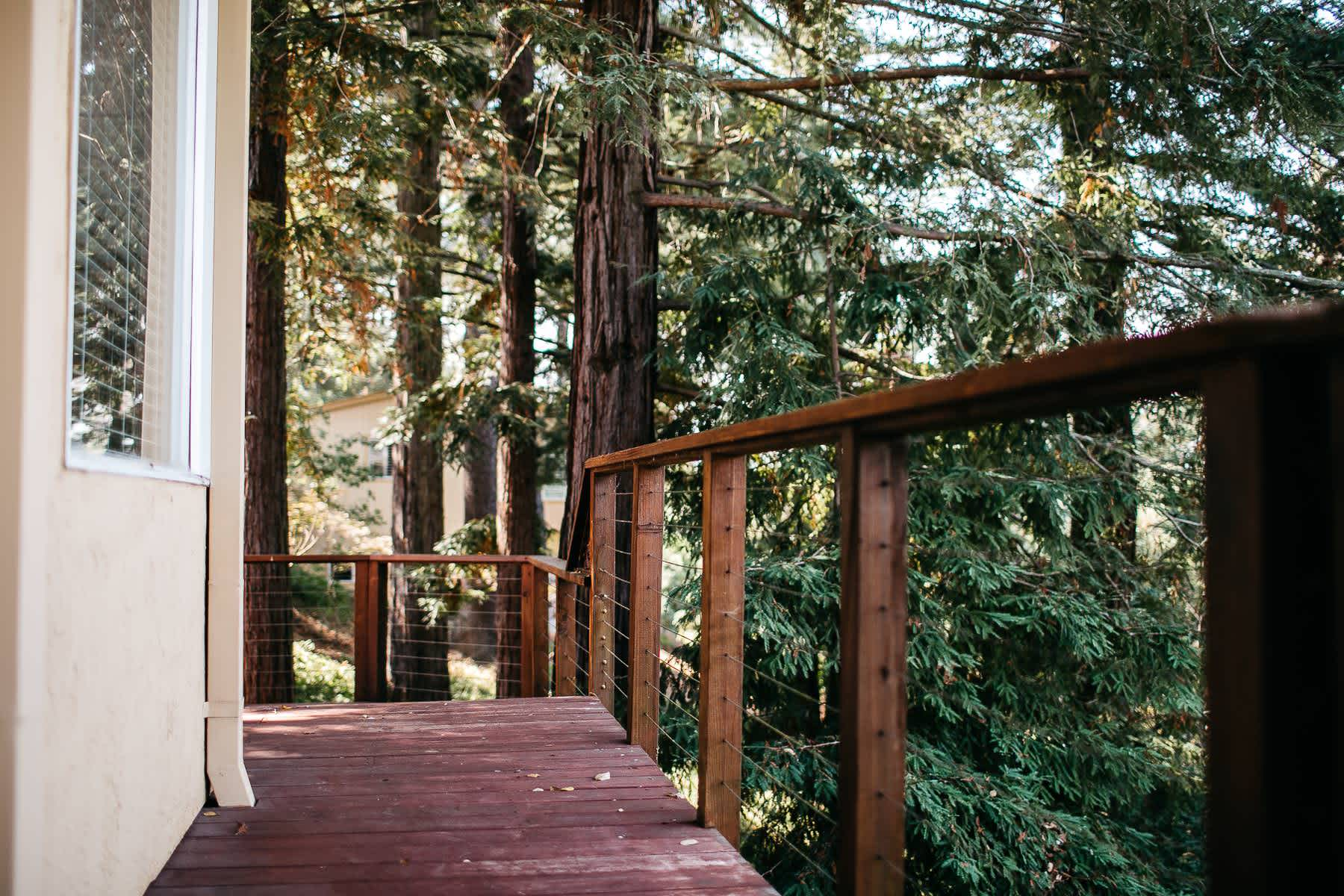 oakland-redwoods-summer-wedding-5