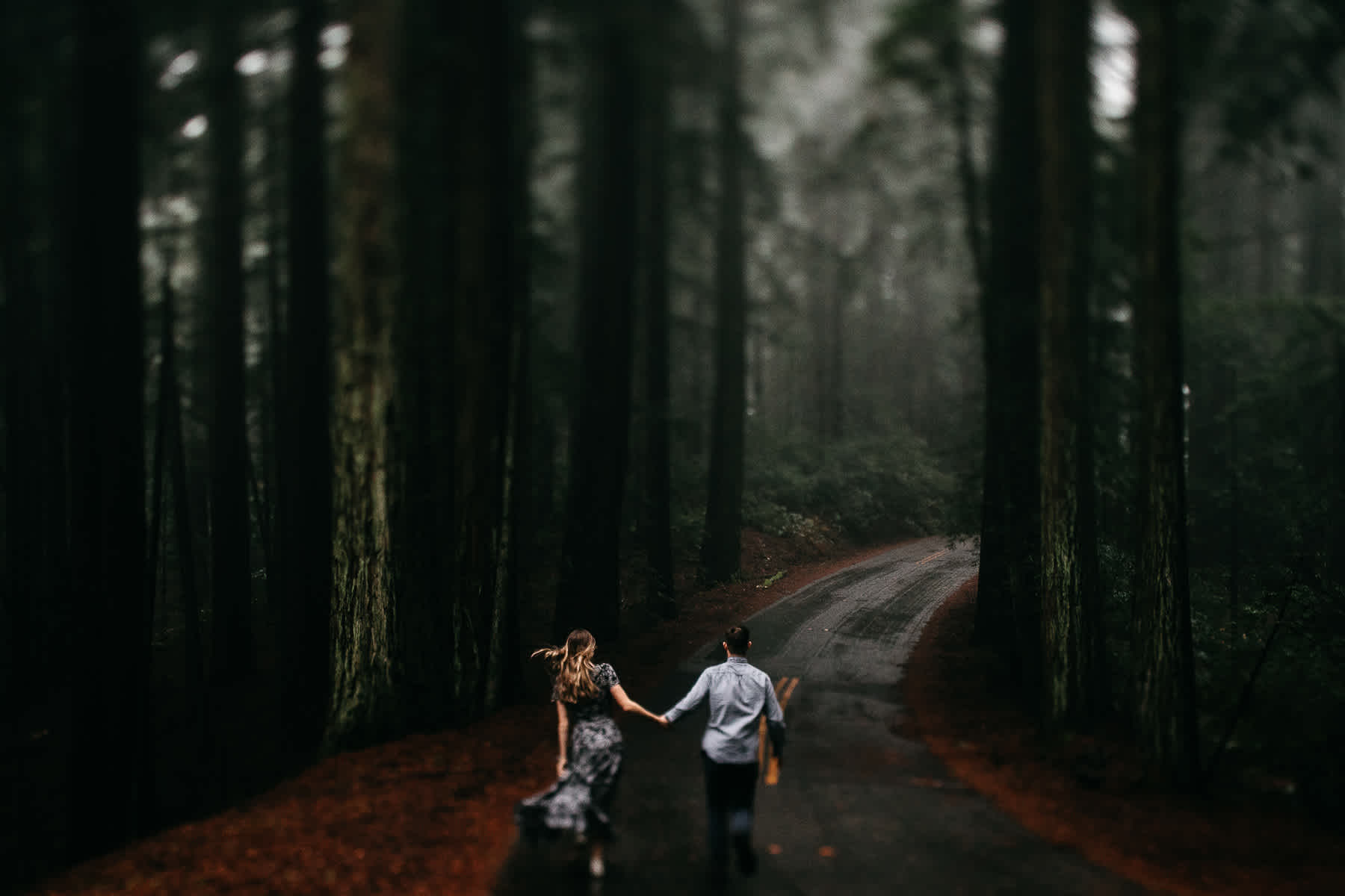mt-tam-california-foggy-fall-engagement-hills-redwood-engagement-session-26