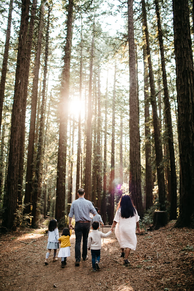 oakland-redwoods-dreamy-big-family-lifestyle-session-8