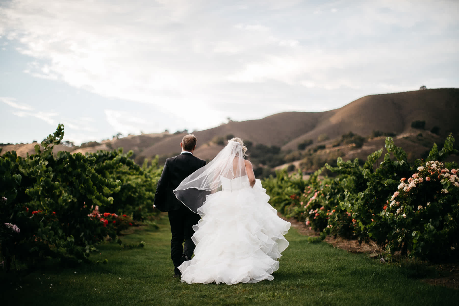 kirigin-cellars-gilroy-summer-sunset-wedding-74