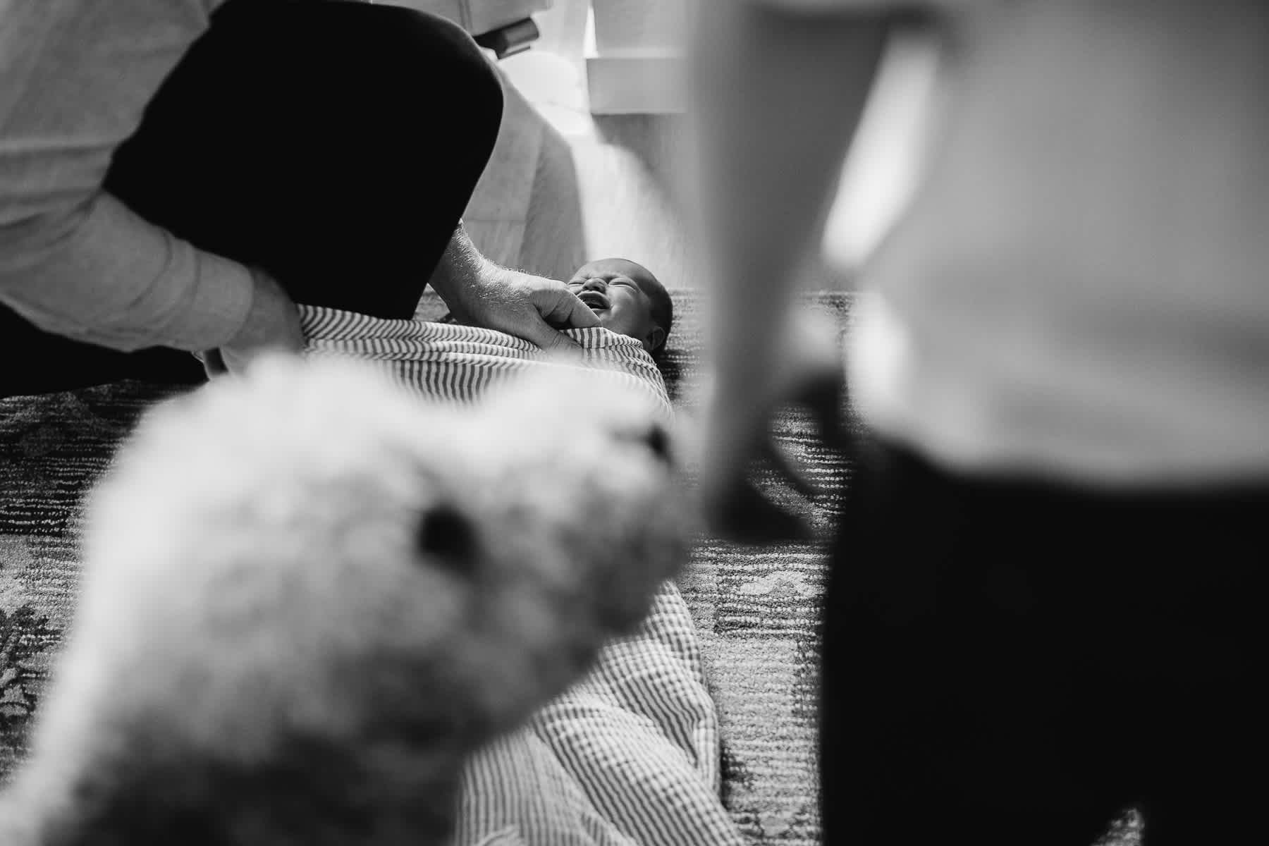 san-francisco-lifestyle-in-home-newborn-with-dog-66
