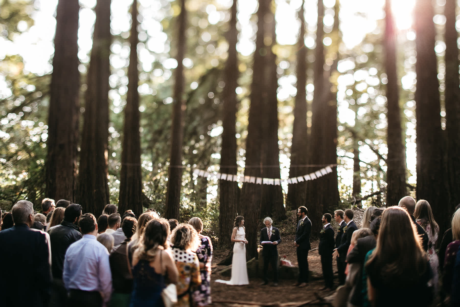 oakland-redwoods-summer-wedding-51