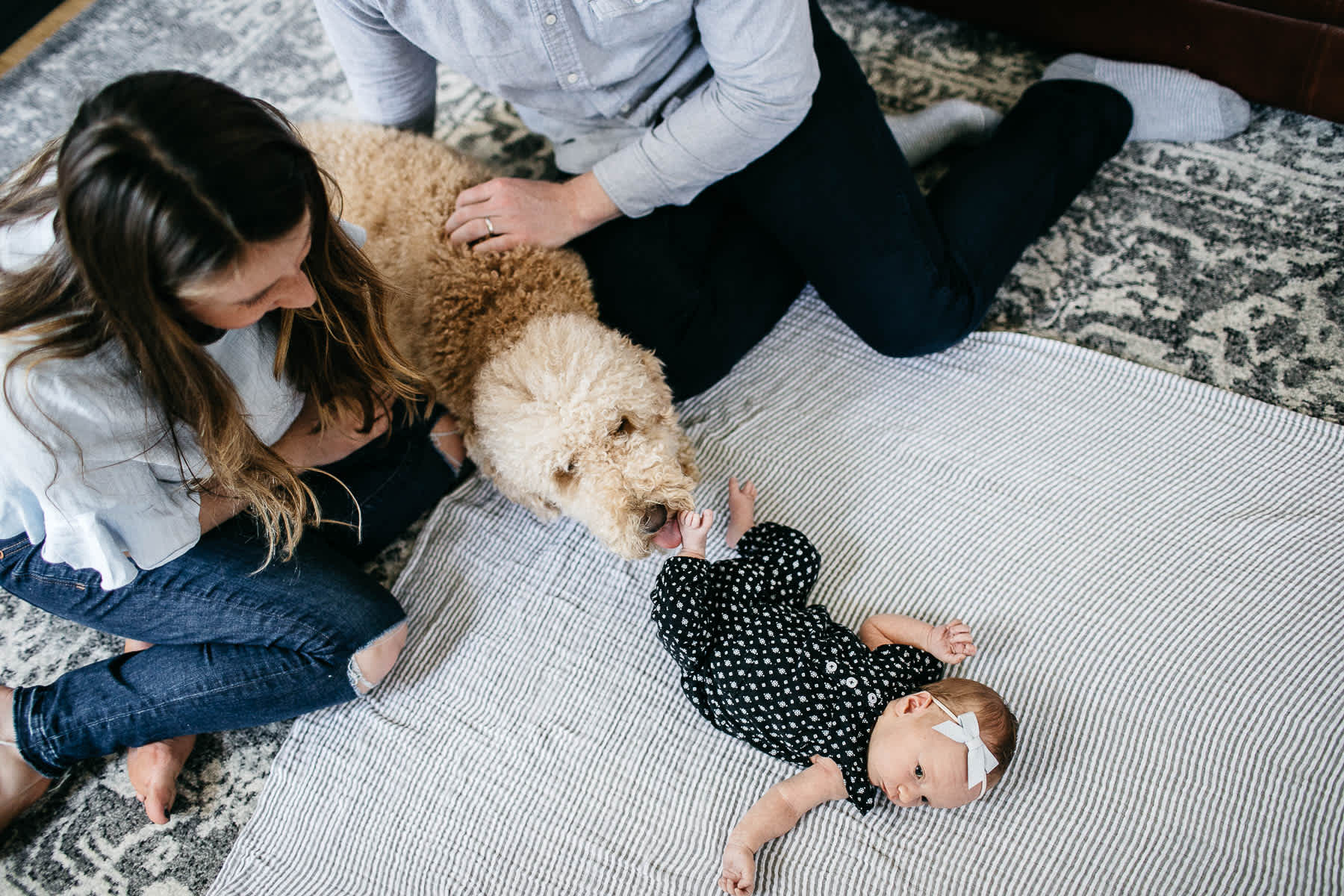 san-francisco-lifestyle-in-home-newborn-with-dog-19