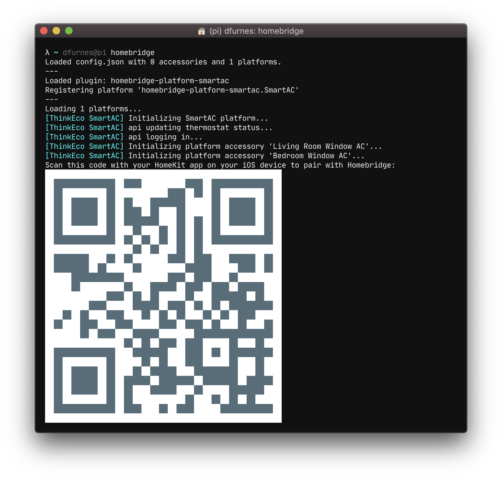 Running 'homebridge' from the terminal
