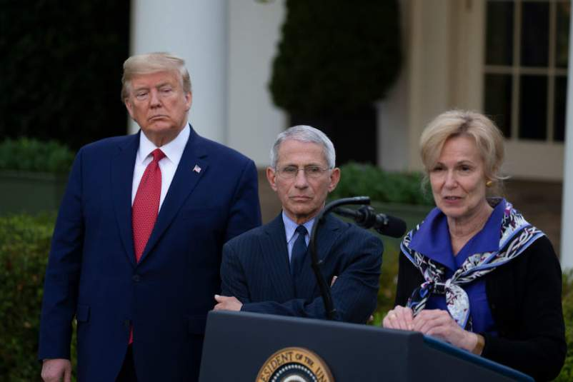 Has Deborah Birx, White House Coronavirus Task Force Coordinator, Crossed  the Line?