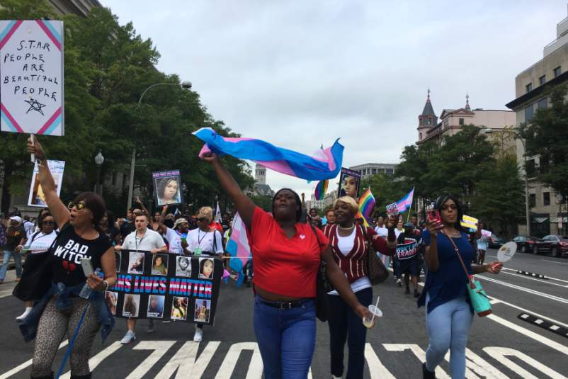 Activists Lead Trans March for Visibility in DC credit Stephen Hicks