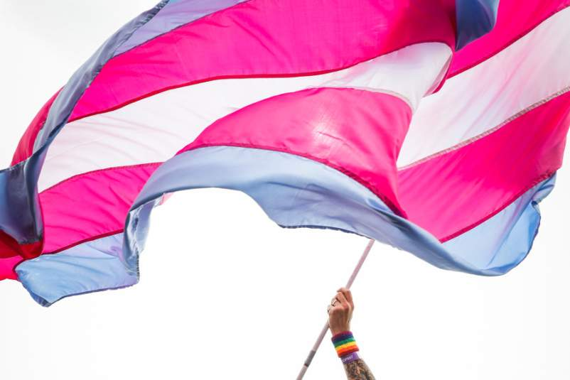 A man waves transgender pride flag during Brighton Pride Parade on August 03, 2019