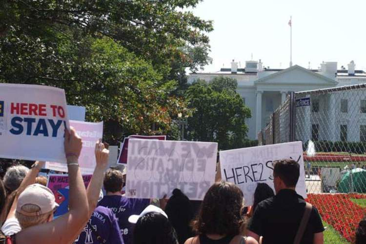 DACA protesters in front of White House