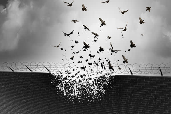 birds breaking out of prison wall