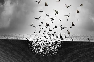 birds flying out of wall with barbed wire