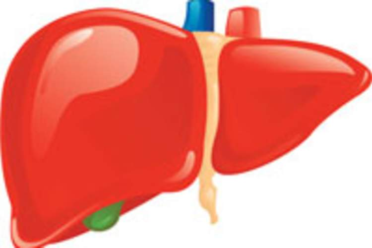 Non Alcohol Fatty Acid Liver Disease: An Emerging Problem Img