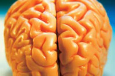 Cerebral Blood Flow Lower in Men With HIV, but Not Linked to Cognitive Impairment Img