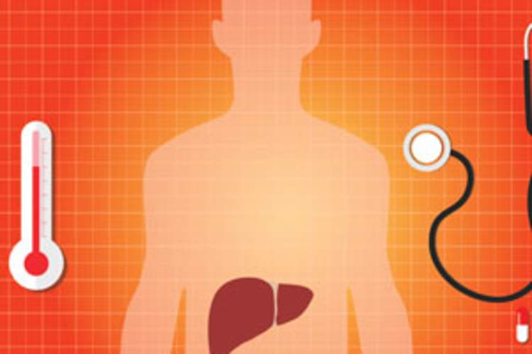 Hepatitis C and Liver Cancer Img
