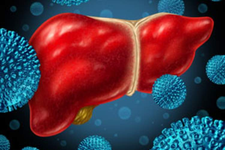 Hepatitis C Positive Organ Donors -- Coming Soon to a Transplant Center Near You Img