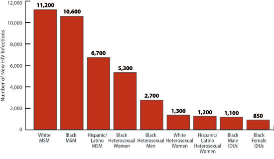 Figure 1: Estimated New HIV Infections in the United States, 2010, for the Most Affected Subpopulations