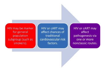 How HIV May Affect Cardiovascular Risk