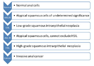 Stages of Anal Cell Abnormalities