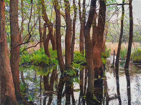 George Towne, 'Meat Rack Swamp'