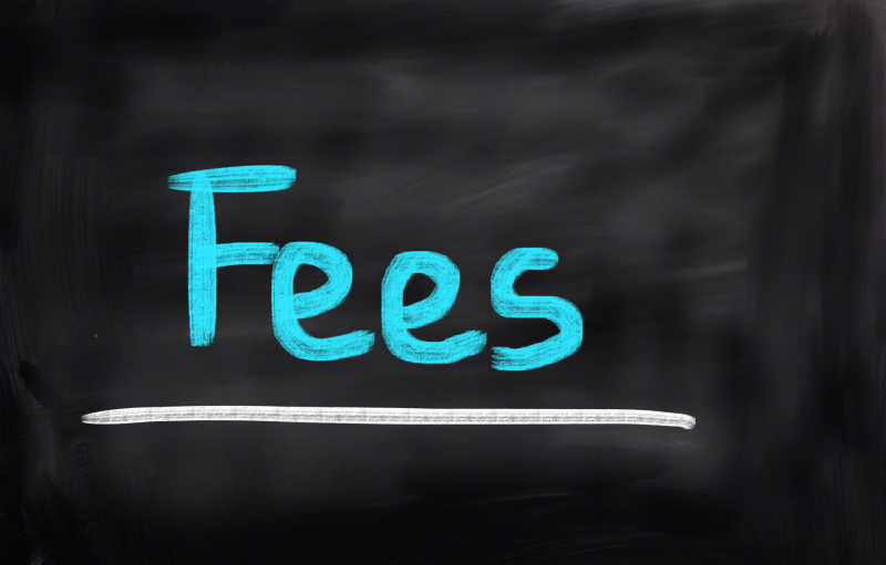 "This is a photo of the word ""fees."" The word is written on a blackboard in blue chalk color."