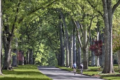 Nearby neighborhood trails