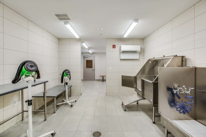Pet spa with tub and dryers