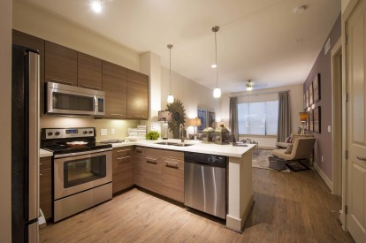 Modern style kitchen quartz countertops stainless appliances
