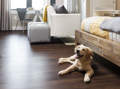 Cherry wood design scope pet friendly