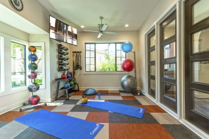 Fitness center yoga and pilates space with stability balls a tv and ceiling fan