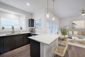 Open-Concept Kitchen and Living Room