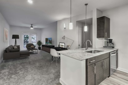 Modern garden apartment kitchen with home office space and living room