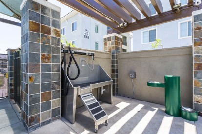 Outdoor dog wash station with hose and dryer and water fountain