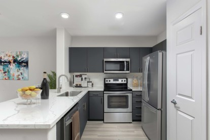 Kitchen with quartz countertops stainless steel appliances wood look flooring and undermount sink