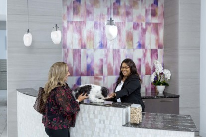 Pet friendly community with 24 hour concierge services at Camden Potomac Yard