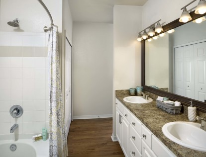 Bathroom with double sink vanity and large soaking bathtub