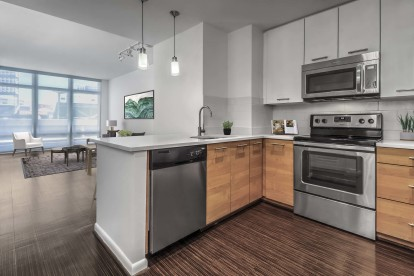 Spacious modern kitchen with stainless steel appliances and open living room