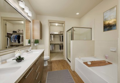Large bathroom with tub and stand up shower and attached closet