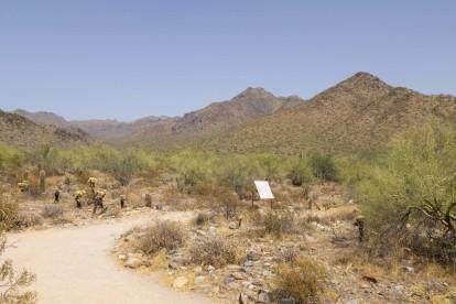 Neighborhood hiking trail