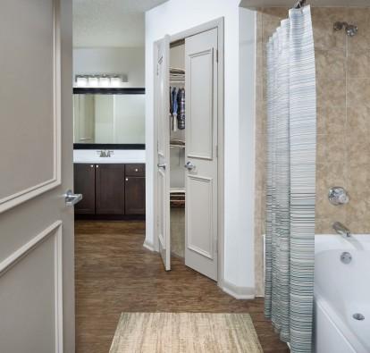 Luxury bathroom with walk in closet