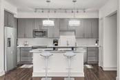 Large kitchen grey design scope with island