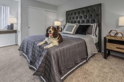 Bedroom with windowed desk nook dog friendly and carpet flooring