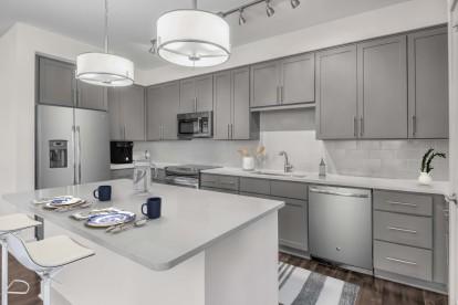 Large kitchen grey design scope stainless steel appliances