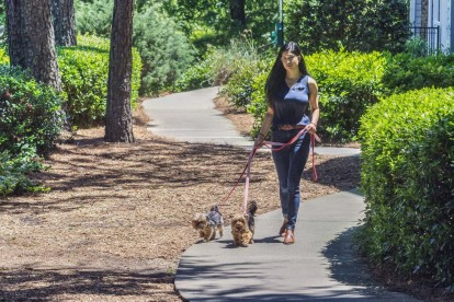 Pet-friendly community with serenity walking path with pet waste stations