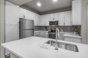 Modern style kitchen with quartz countertops stainless steel appliances and undermount sink