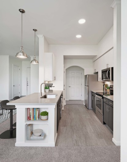 Contemporary style kitchen with modern finish quartz countertops